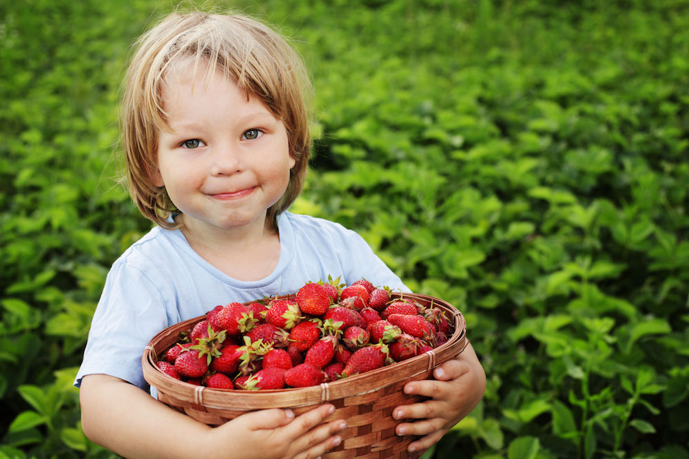 Why get your kids to eat organic? By Mituri